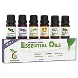 Ätherische Öle Set BIO - 100% naturrein - Duftöle für Diffuser - Aromaöle für Aromatherapie, 6...