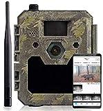 icuserver Wildtierkamera icucam 4G / LTE - 4000 Bilder zu jeder neuen 4G-Kamera - Wildkamera mit...