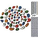 ALPIDEX Starterset: 60 Klettergriffe Klettersteine inkl. Schrauben und Einschlagmuttern, Farbe:Mixed...