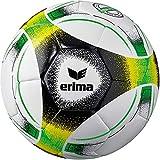 ERIMA Hybrid Lite 350