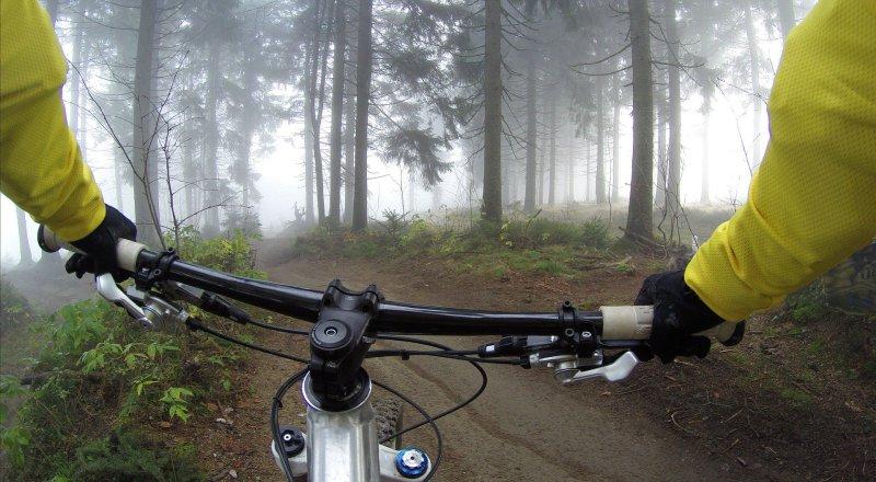 Fahrrad im Wald beim Trekking