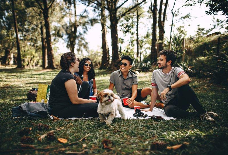 Menschengruppe auf Picknickdecke