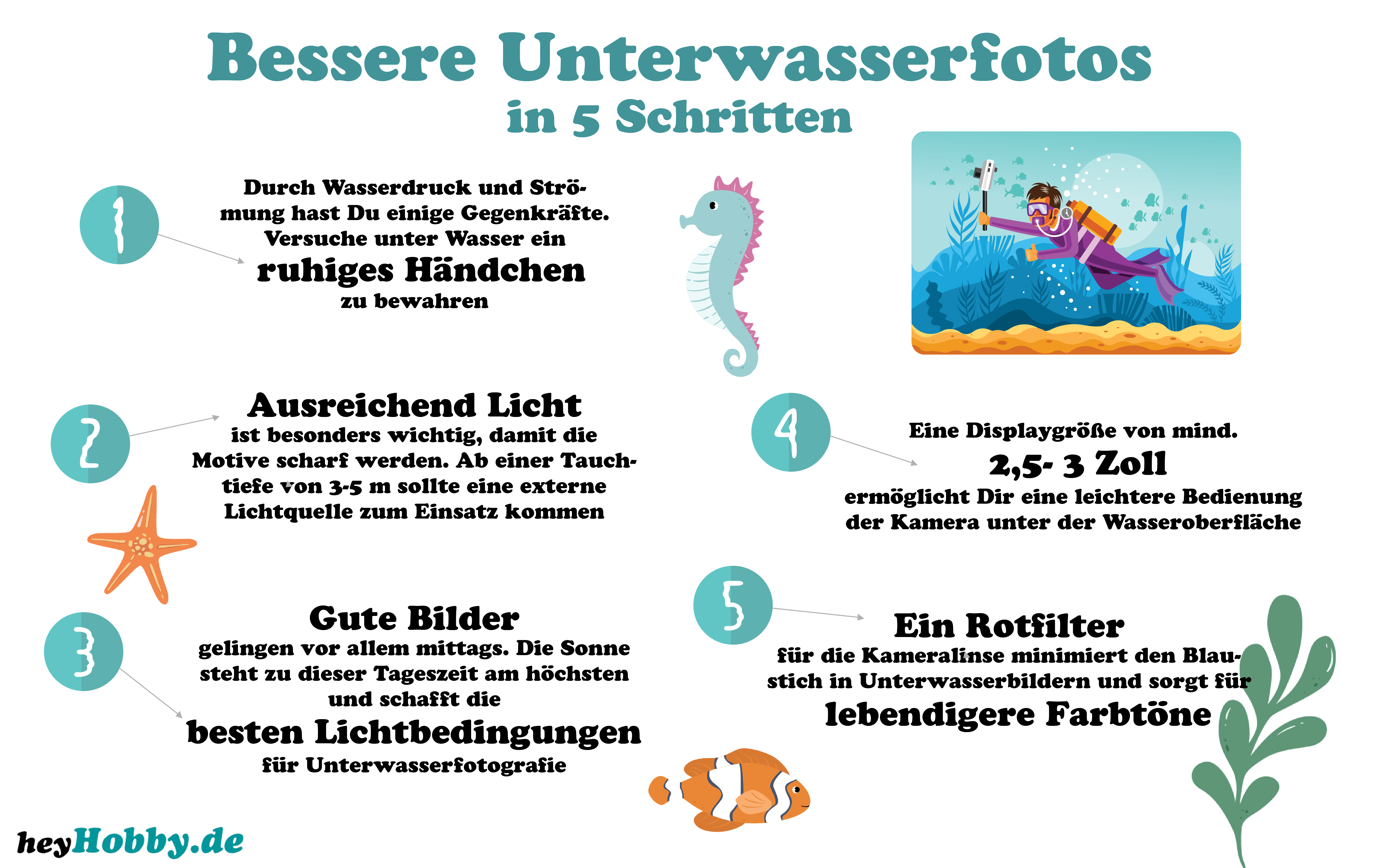 Infografiken Unterwasserfotos Tipps