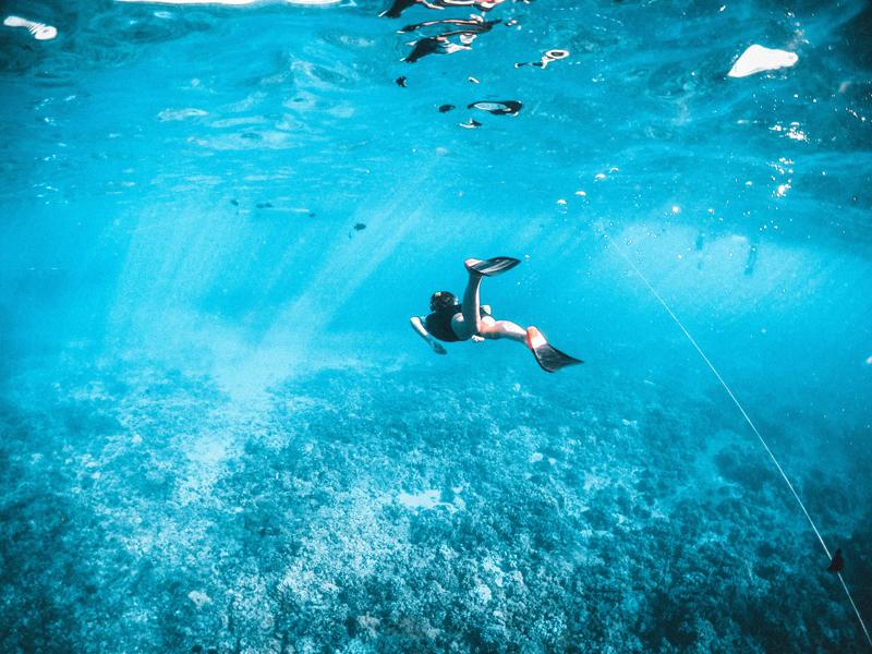 Unterwasserbild von einem Schnorchler