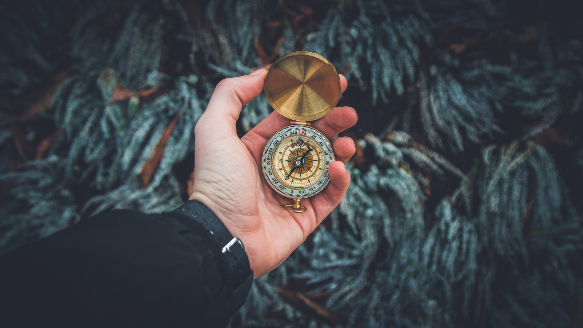 Kompass im Survival Kit