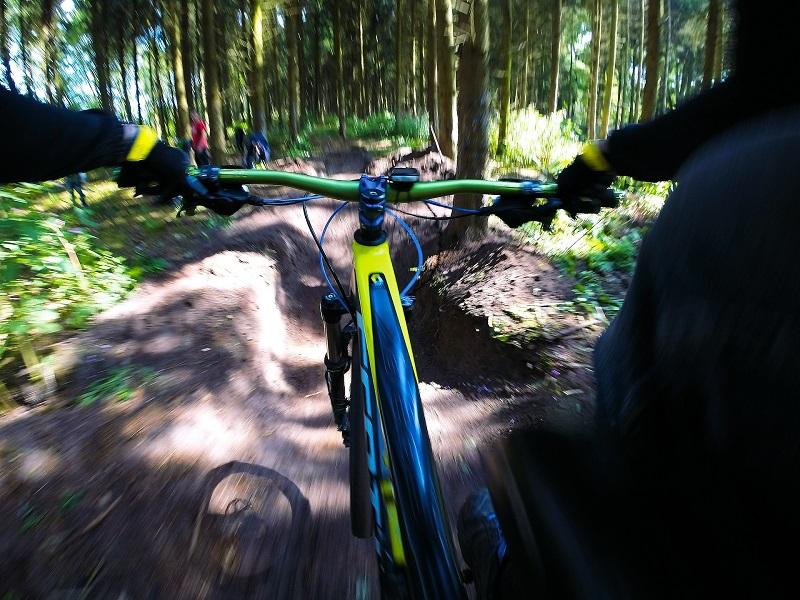 Fahrrad-Navi: Test, Vergleich und Kaufratgeber