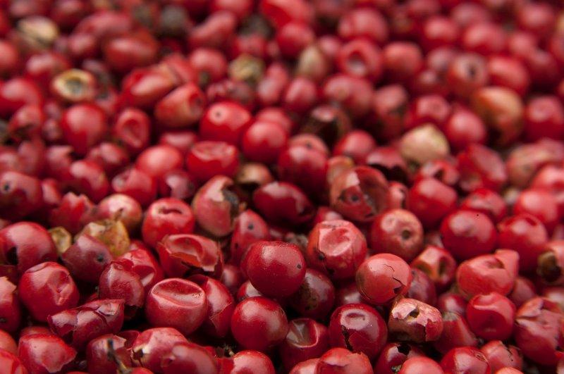 Geerntete rote Goji-Beeren