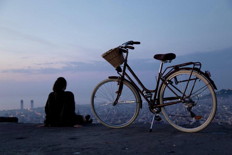 Damenrahmen Citybike