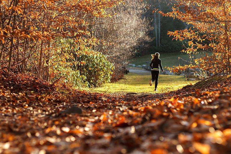 Frau laeuft bei herbstlichem Wetter im Wald mit Laufhandschuhen