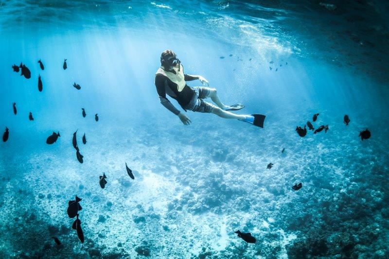 Schnorchler mit Flossen in der Unterwasserwelt
