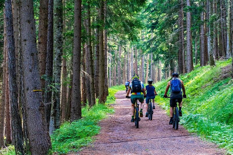 Trekking E-Bike Familienausflug