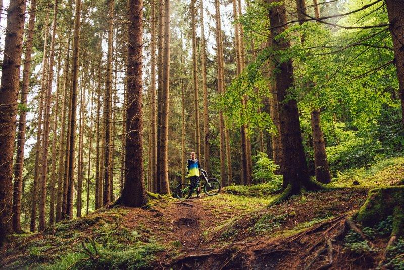 Trailbike fahren im Wald