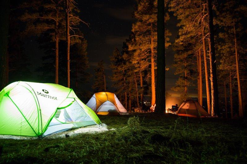 Camp im Wald bei Nacht