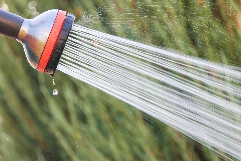 Duschkopf einer Gartendusche