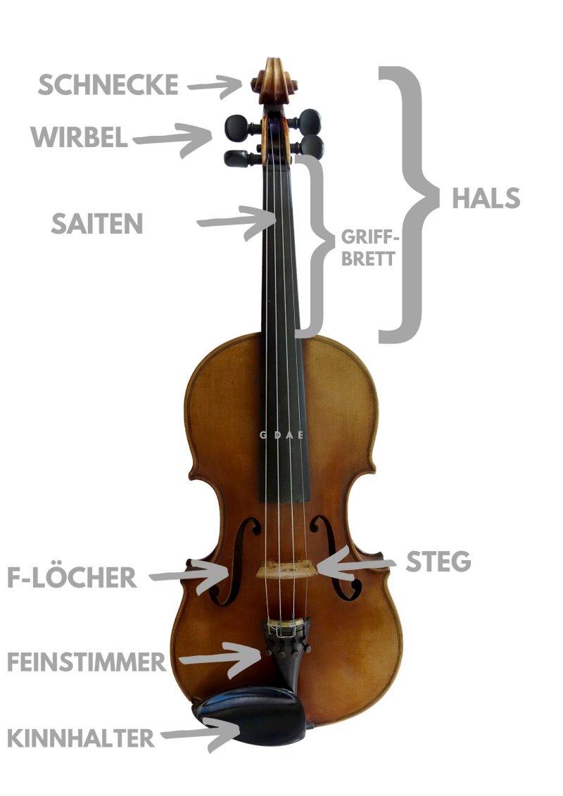 Geigen Aufbau