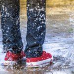 Schuhtrockner: Test, Vergleich und Kaufratgeber