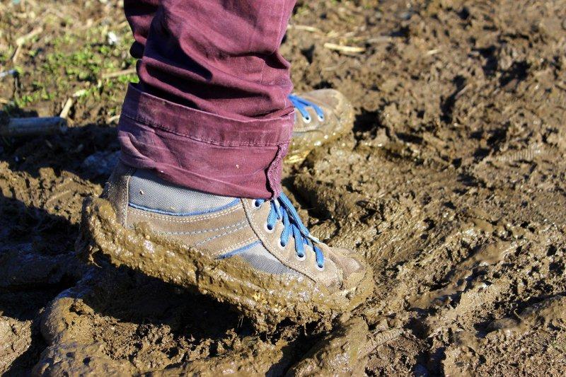 Schuhtrockner für schmutzige Schuhe im Test