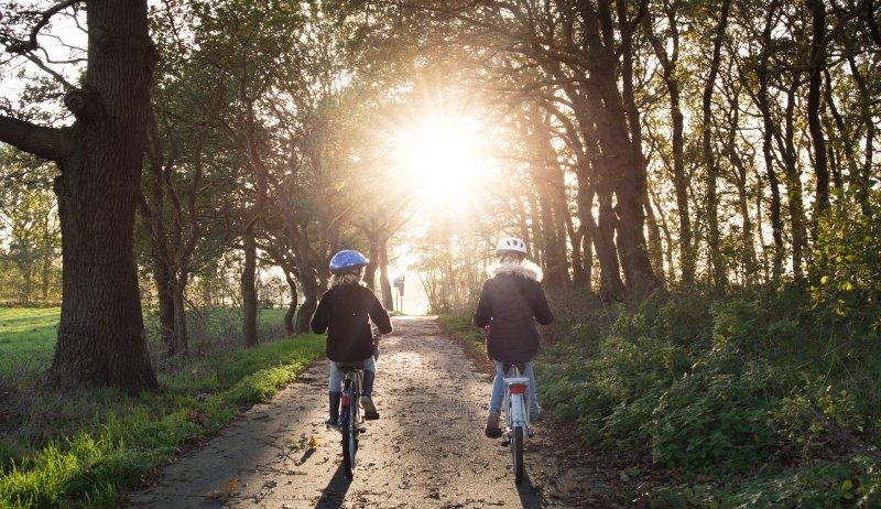Kinder beim Fahrradfahren im Wald