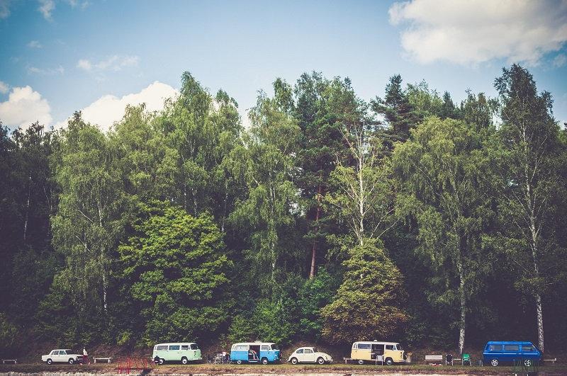 Vans am Rande eines Waldes