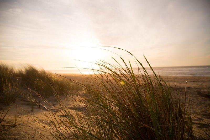 Wind weht am Strand beim Camping ohne Windschutz