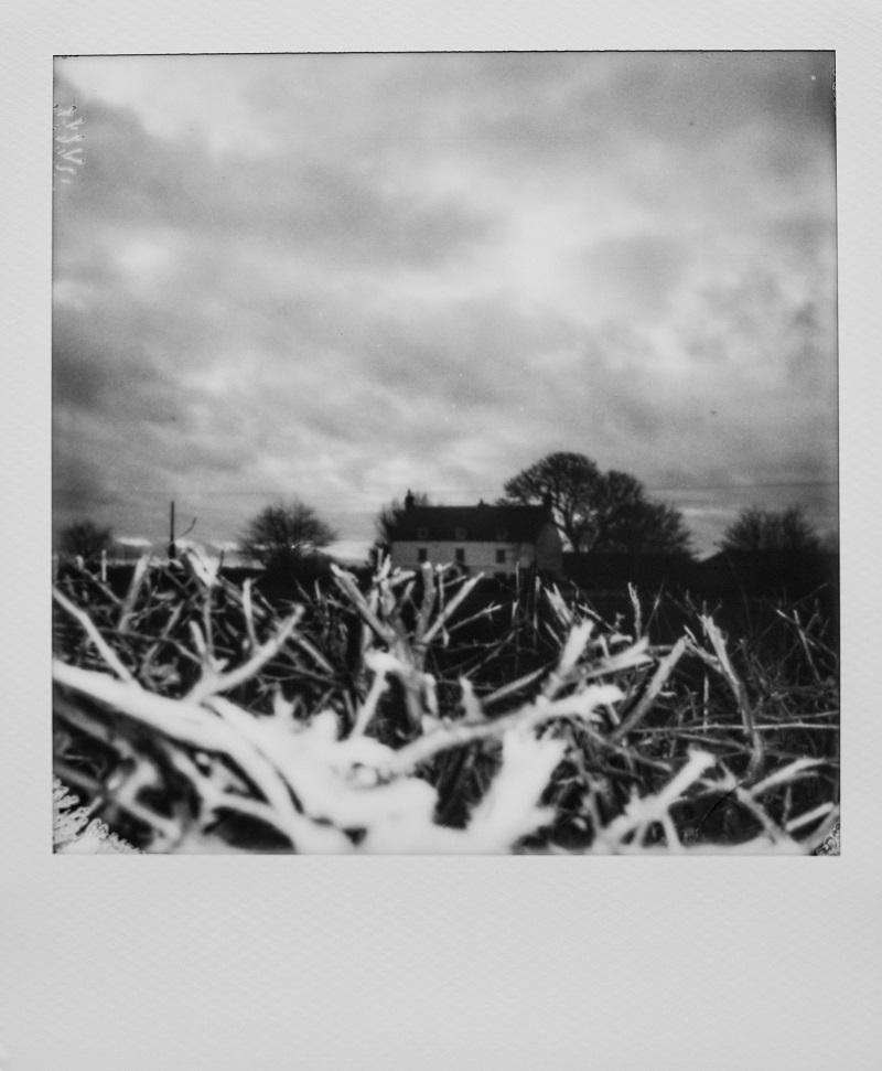 Sofortbilkamerabild in schwarz-weiß