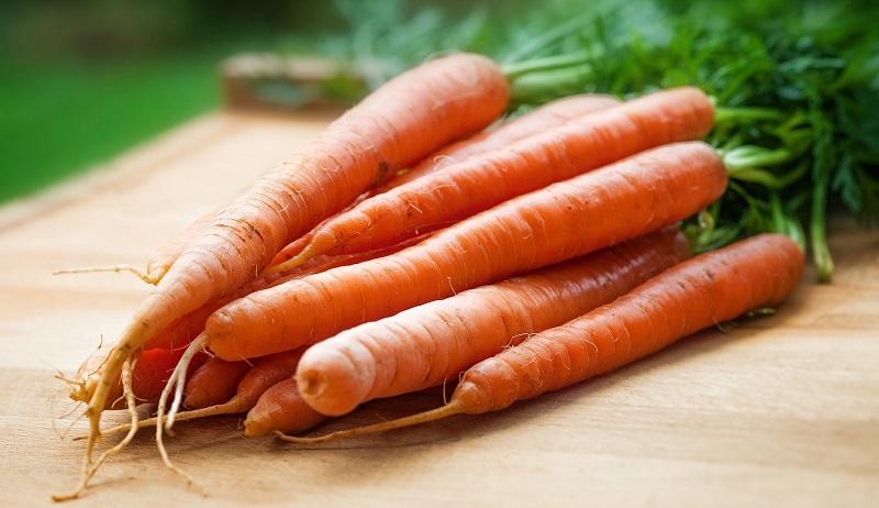 Karotten sind bei der Ernährung ein wichtiger Carotin-Lieferant.