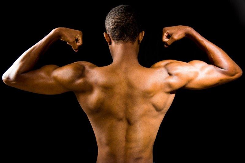 Ein trainierter Körper durch ausgewogenes Training am Ganzkörpertrainer