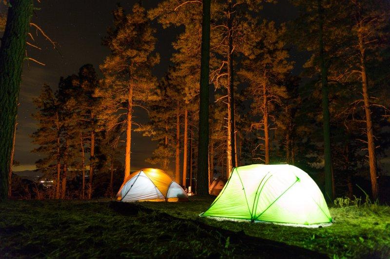 Beleuchtete Zelte im Wald