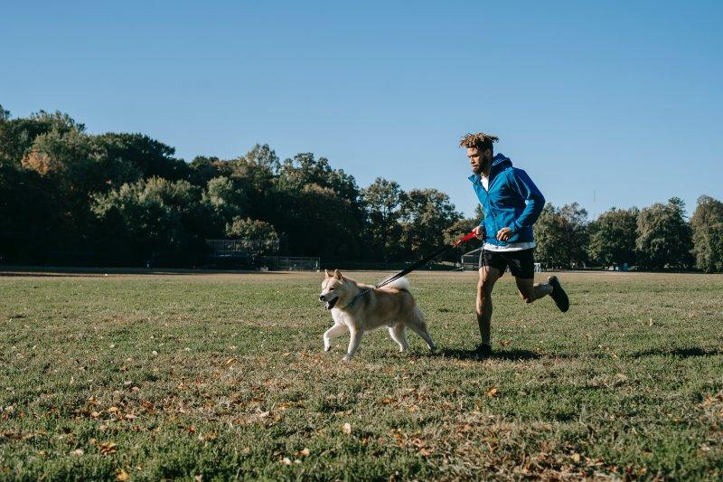 Laufgürtel bei Aktivitäten mit Hund