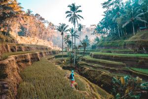 Indonesien Bali Reisen