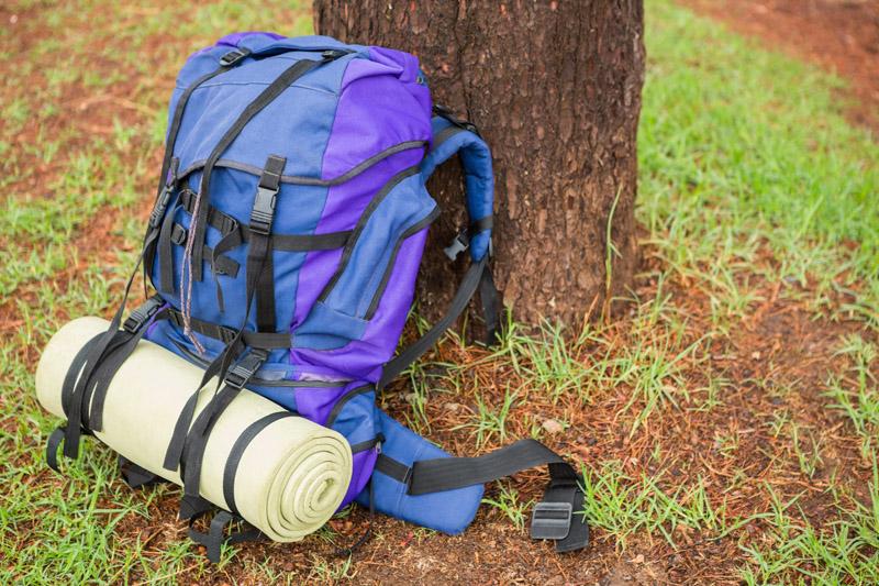 Gepackter Wanderrucksack, der an einem Baum lehnt