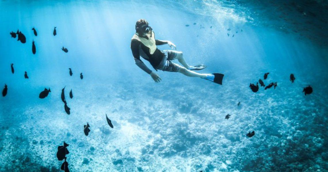 Egal wie oft Du mit deinem Schnorchel ins Wasser aufbrechen wirst, Du wirst immer wieder neue Eindrücke bekommen.
