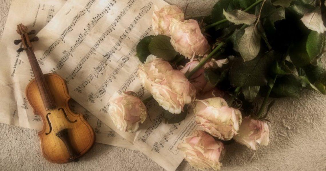 Geige ästhetisch