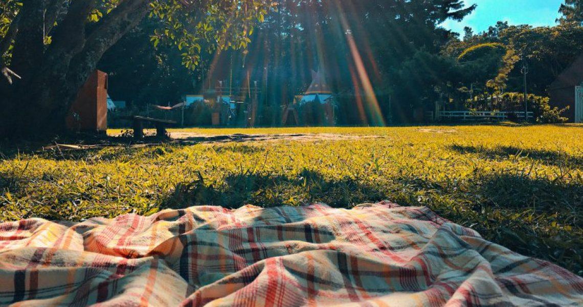 Picknickdecke auf sonniger Wiese